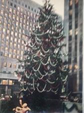 Rockefeller Tree 1951